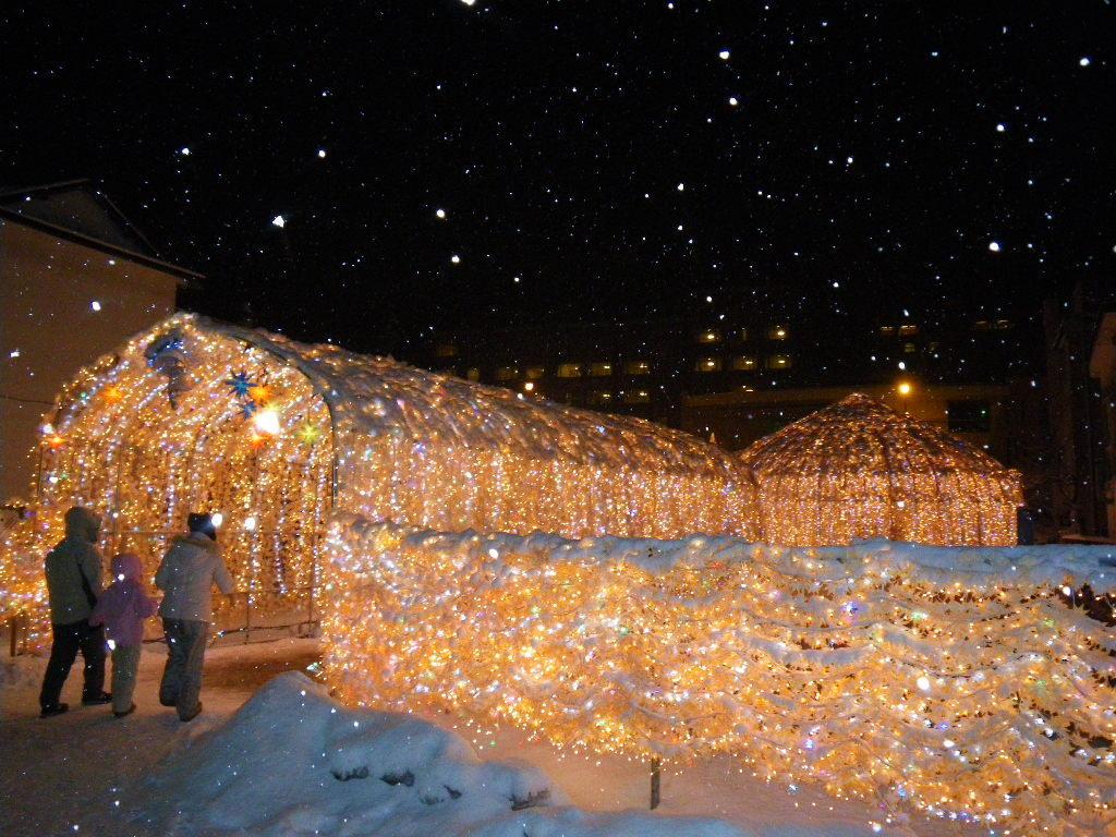 2010年1月4日(月)、札幌市内で講演会を開催の予定です。