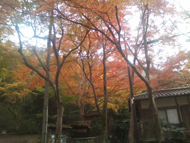 09.11.21京都講演会ご参加ご視聴ありがとうございました。