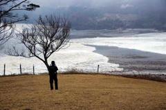 人工津波を起こすために海底核爆発を起こせば、東北沿岸の海底から放射性物質が検出されて当たり前です。