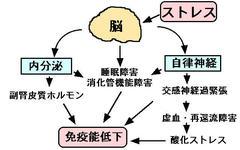 福島の子ども、半数近くが甲状腺被曝 政府調査で判明