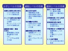 2011.9.18リチャード・コシミズ弘前講演会「低線量放射線の不思議を科学する」を公開します。