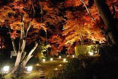 2011.11.13 RK山形・天童講演会のお知らせ
