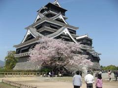 「世界に良い影響」日本トップ…BBC読売調査