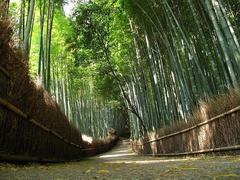 ■2012.9.30 リチャード・コシミズ京都講演会のお知らせ