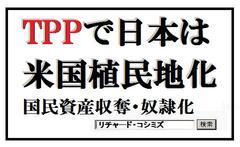 TPP詐欺まとめ