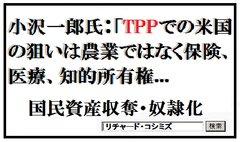 小沢一郎氏:TPPでのアメリカの狙いは農業ではなく保険、医療、知的所有権というデカいものを狙っている