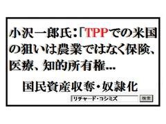 あんた、TPPのメリットを説明してみてくれよ。誰も期待していないけれど。