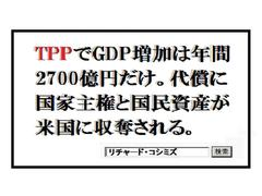TPP詐欺:詭弁のサンプル