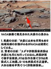 ユダヤ米国式偽宇宙探査:火星に棲む小鳥さん