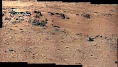 火星にトカゲ、リス、小鳥がいるはずがない。火星探査は嘘だった!