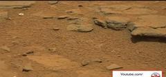 ユダヤ米国特製インチキ火星探査の収穫!火星製のCD!
