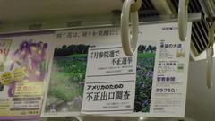 さて、今夕、とりあえず、太田和美さんの街頭演説の応援に行こうか?