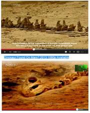 お笑い火星探査:火星に恐竜の骨?
