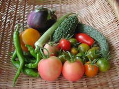 安心安全食材 小川町の「野菜セット販売」好調のようです。