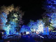 2013.12.15 リチャード・コシミズ秋田「白雪の舞う中で」講演会を公開します。