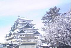 2014.2.15 リチャード・コシミズ名古屋「氷も雪も溶かす熱い思いで」講演会動画を公開します。