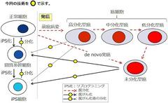 ガンが簡単に治ってしまうとユダヤ金融資本さんは真っ青です。鳥取大三浦先生を守らないと。