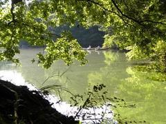 RK14.4.19奈良「緑いっぱい」講演会の動画を公開します。