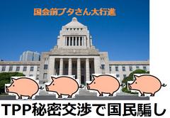 TPP対日侵略不平等条約:今、TPP原則合意を公表すると、日米とも業界が猛烈に反発するので