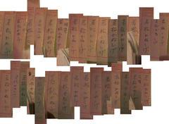 創価学会の皆さん、あなた方が書いた偽票の一部です。