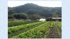 2014.6.28RK小川町「食べるぞー飲むぞー」講演会の動画を公開します。