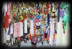 緊急企画 7月26日(土)、小川町RK独立党七夕祭り懇親会を開催します。