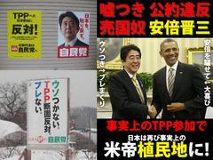 TPP交渉、見事に暗礁に乗り上げ、1ミリも先に進まず。