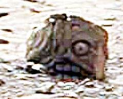 NASA(Not A Space Agency)の火星写真に偉大なるマヤ・アステカの石像が!