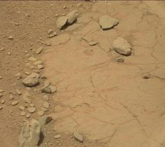 *米国の研修者 火星で恐竜の頭蓋骨を発見