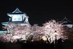 唐突ですが、今晩、RK金沢講演のミニ前夜祭をやります。