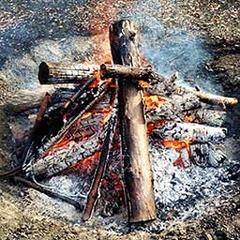 「焚火の効用」